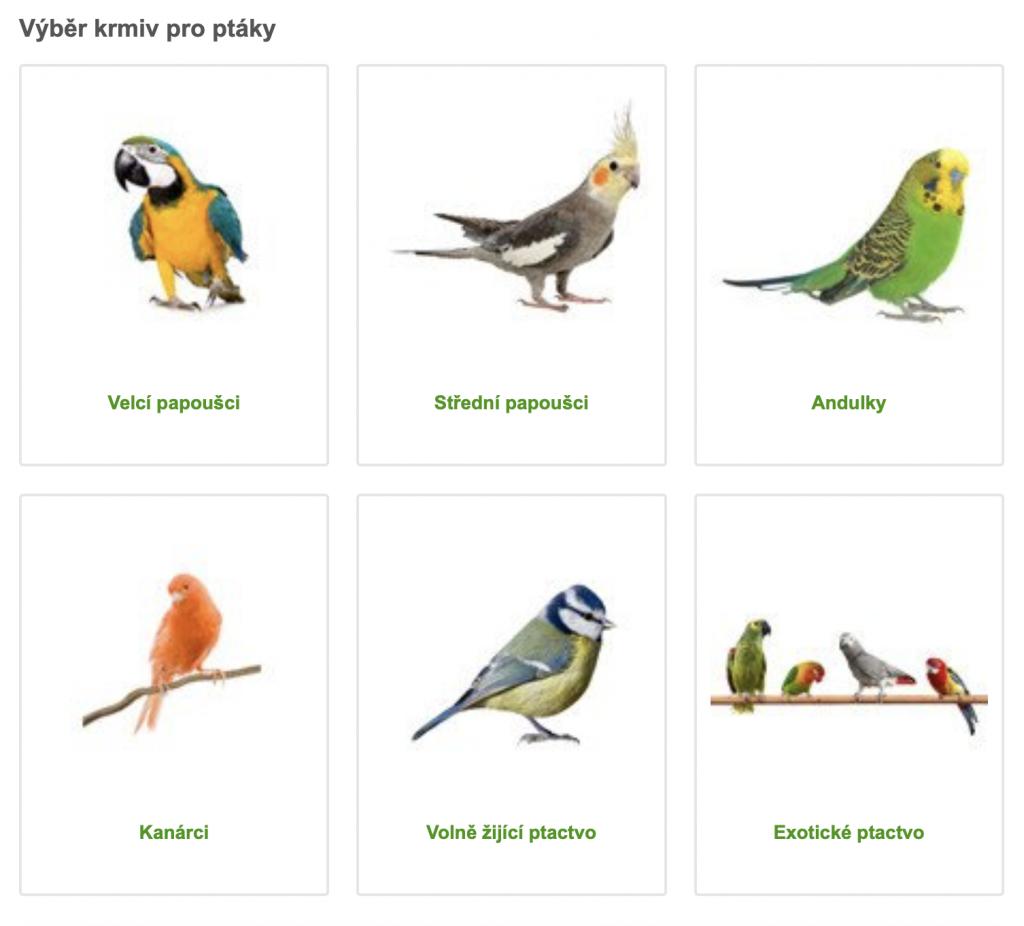 Zoohit ptaci