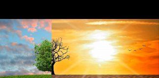 MONETA Money Bank snížila svoji uhlíkovou stopu a stává se zelenou bankou
