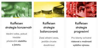 Raiffeisen investiční společnost (RIS)